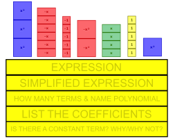 Identifying Key Algebraic Terms and Concepts
