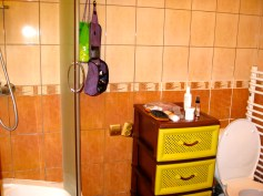 Bathroom with toilet and stand-up shower