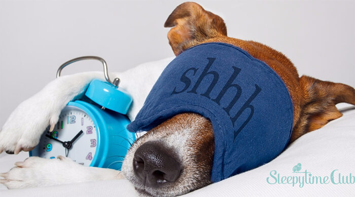 Why should you prioritize your sleep?