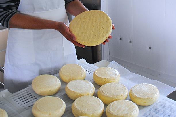 Winter Cheese & Dairy Share