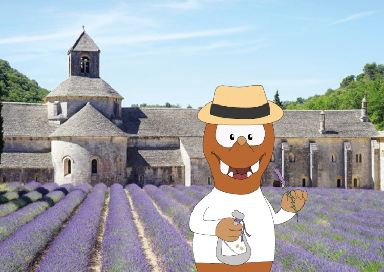 slow travel in Provence with kids_Tapsy Blog