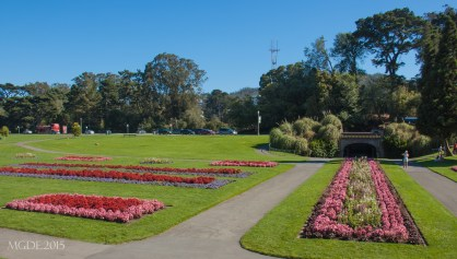 A beautiful space in front of the Conservatory of Flowers