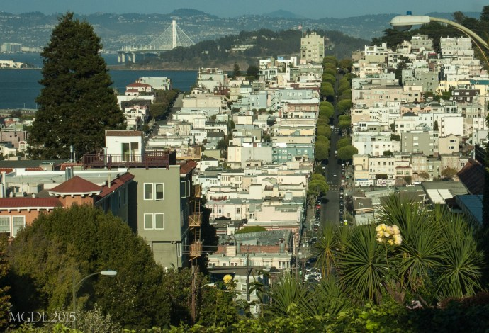 View of the Telegraph Hill and the Bay Bridge from curvy block of Lombard Street