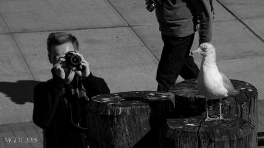 Through my lens...
