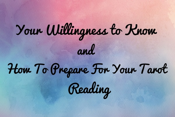 Your Willingness To Know - Tara Nikita