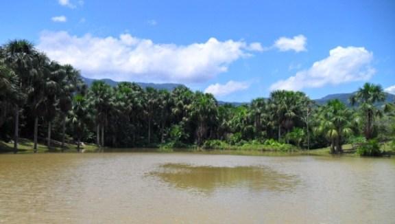 laguna-venecia-tarapoto-peru