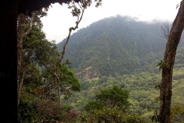 Cerro Verde volunteer Tarapoto