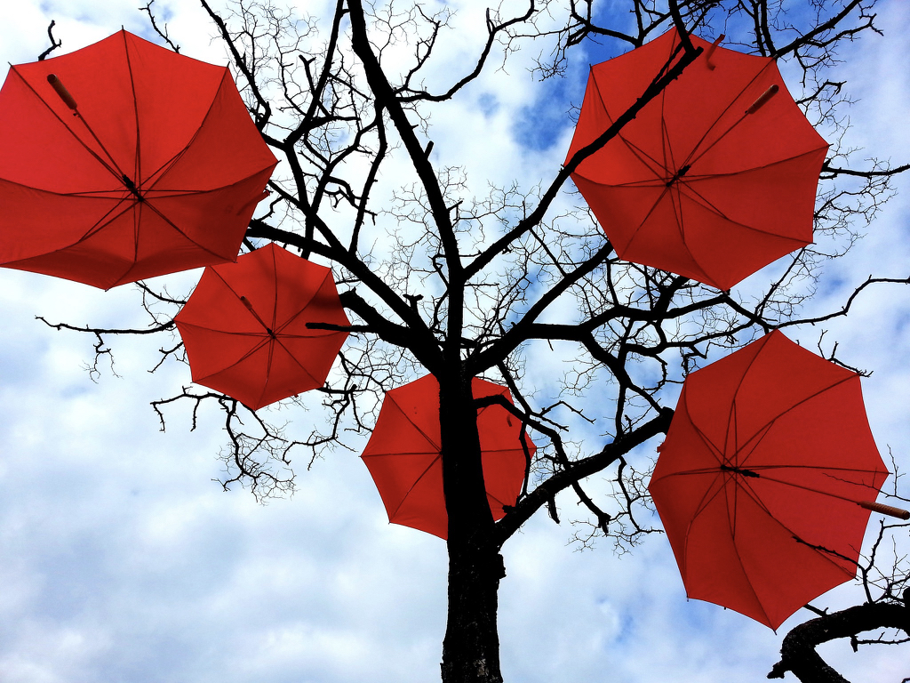 5 open red umbrellas in a tree