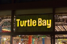 Turtle Bay, Exeter