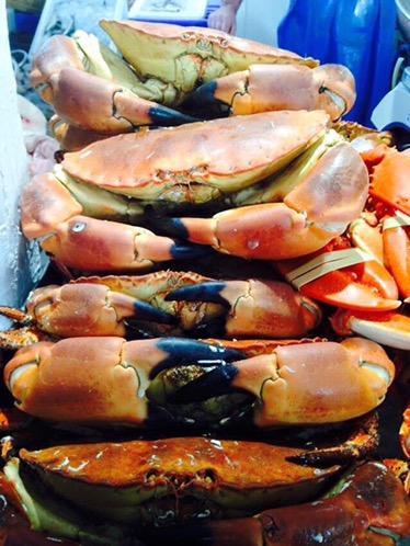 Dartmouth Food Festival