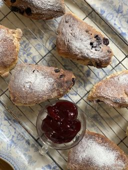 Pantry Provisions - Blueberry Scones