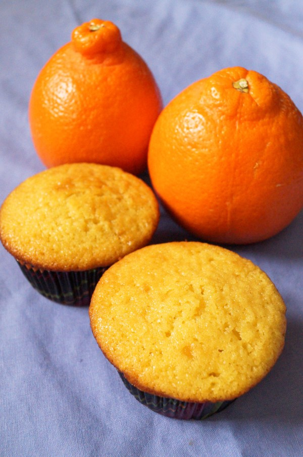 Tangelo Muffins