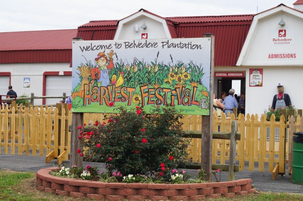 Belvedere Plantation (1 of 40)