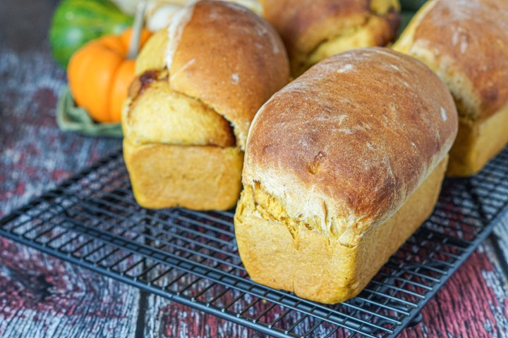 Four Pumpkin Cinnamon Swirl Bread loaves on a black wire rack with pumpkins in the background.