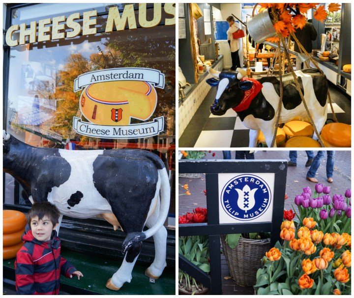 Cheese museum with a black and white cow and tulips at De Negen Straatjes (The Nine Streets)