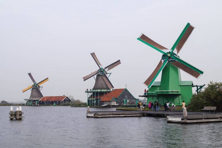 Green and brown windmills at Zaanse Schans along the water.