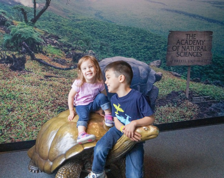 Sitting on a tortoise statue at The Academy of Natural Sciences.
