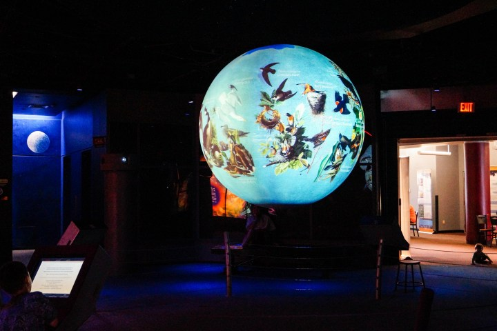Large illuminated globe with images of birds at the Maryland Science Center.