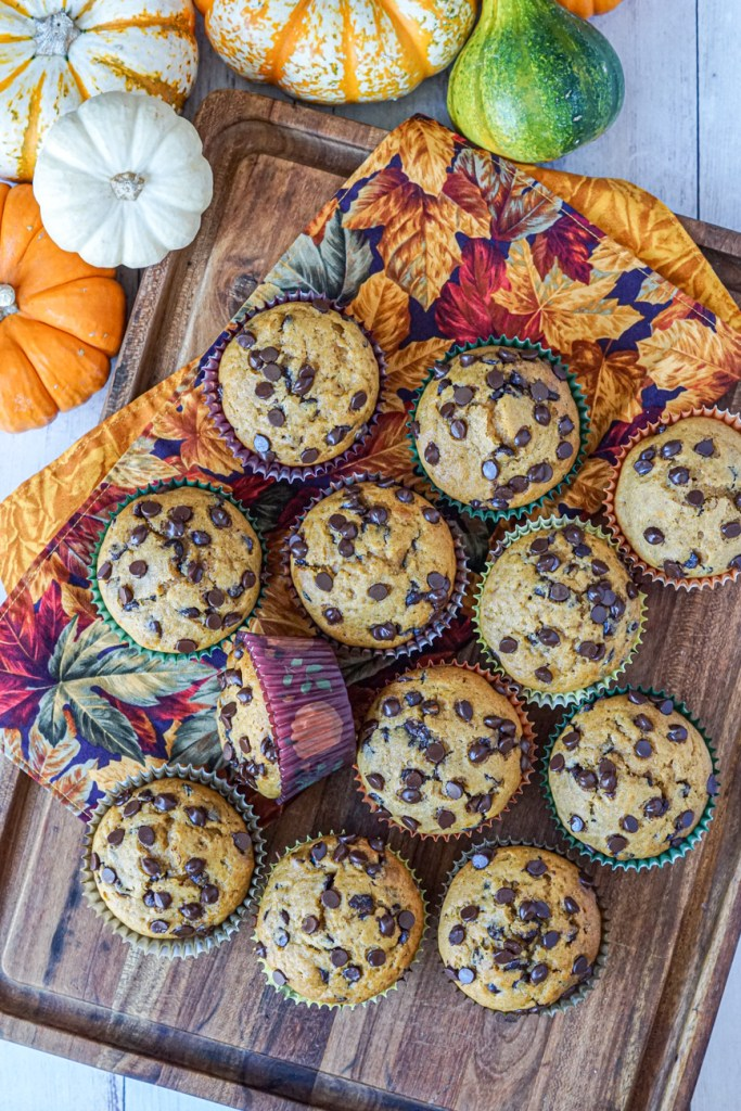 Aerial view of Pumpkin Chocolate Chip Muffins on a wooden board next to five orange, white, and green pumpkins.