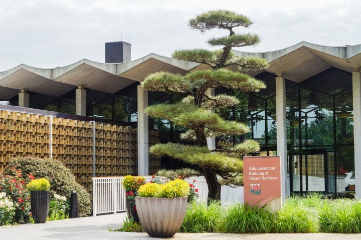 Entrance to the United States National Arboretum with a bonsai and sign stating: Administration Building and Visitor Services