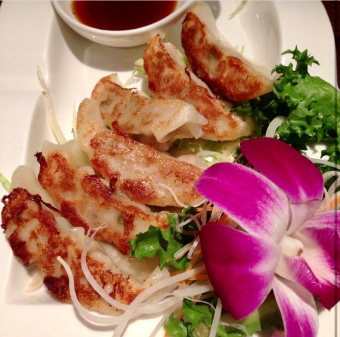 Gyoza on a white plate with bean sprouts, lettuce, and a pink flower.
