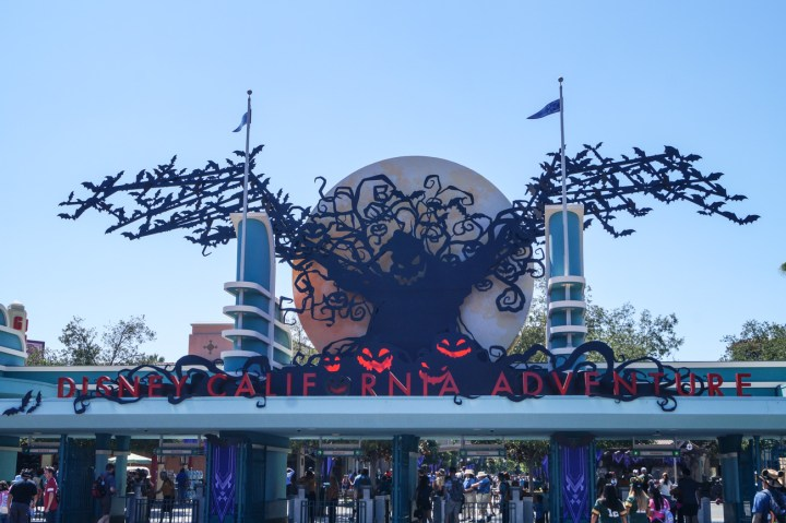 Entrance to California Adventure with halloween sign- bats, Oogie Boogie, and pumpkins