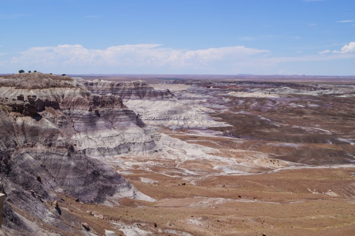 Blue Mesa hills and reddish brown soil at Petrified Forest National Park