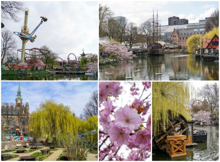 Trees, cherry blossoms, a pirate ship, and spinning ride at Tivoli Gardens.