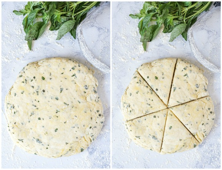 Forming the Basil Parmesan Scones- patting the dough into a large disc next to a dough blade and fresh basil, then cutting it into 6 wedges.