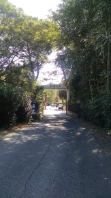 Welcome to Tiber Campground & Hostel