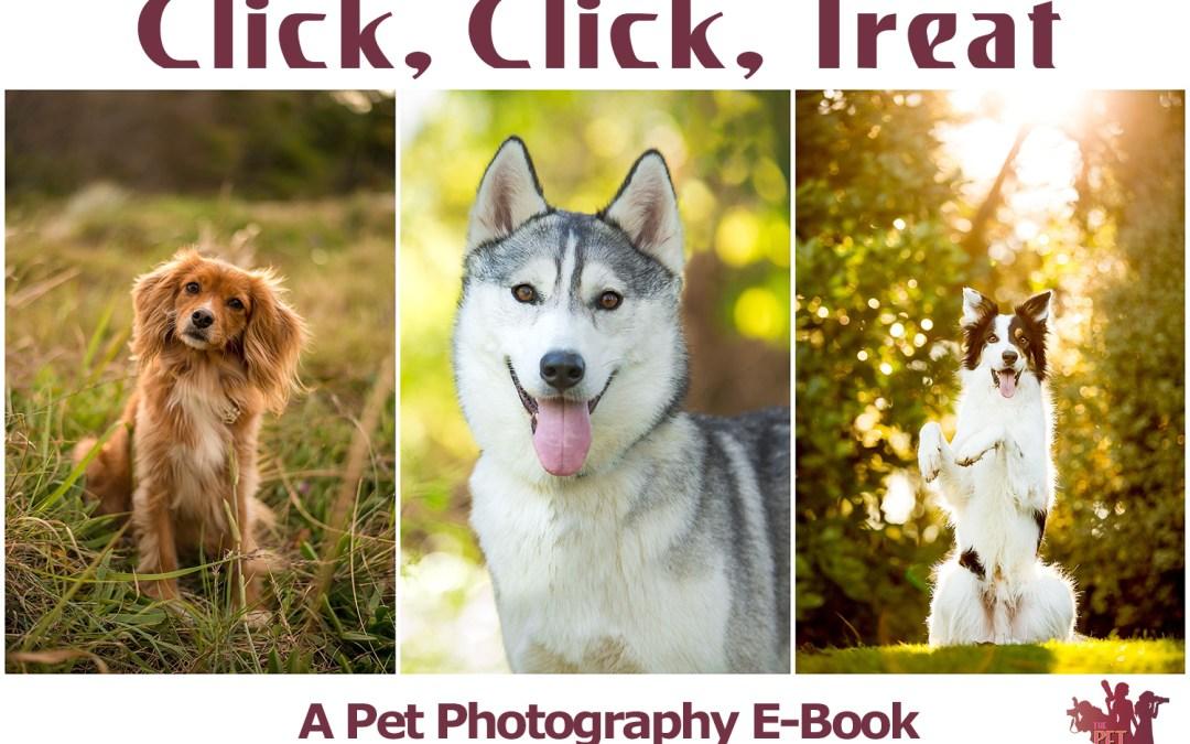 Click, Click, Treat – The Pet Posse Pet Photography Ebook