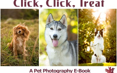 Click, Click, Treat – The Pet Posse Pet Photography Ebook