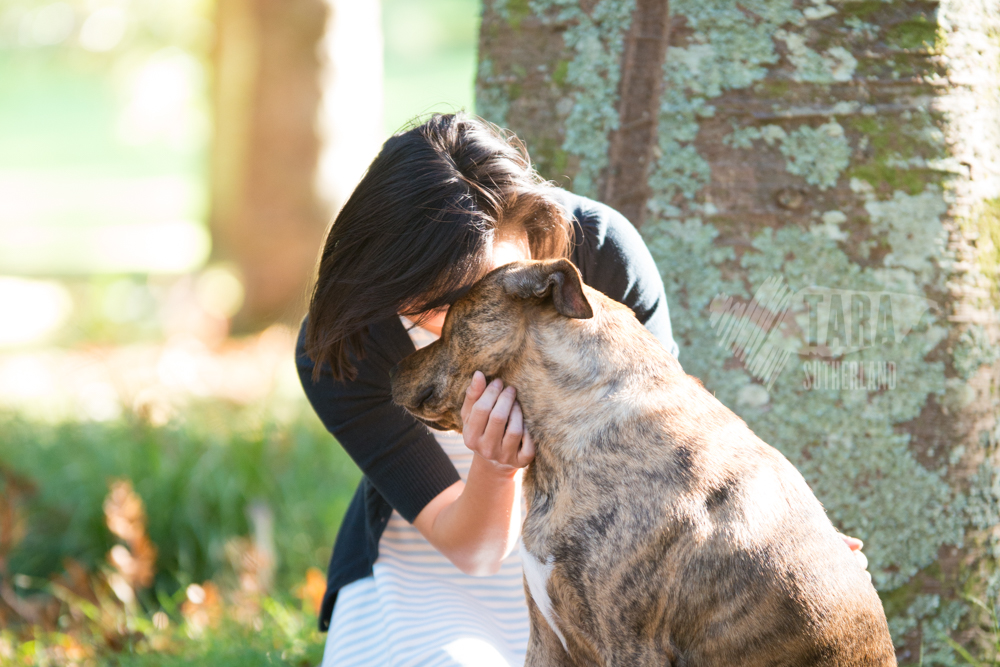 Muffin and Su-Renn | Auckland Pet Photography
