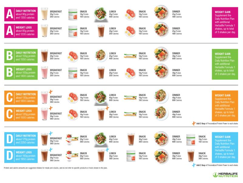 Visual Herbalife Meal Plan Guide