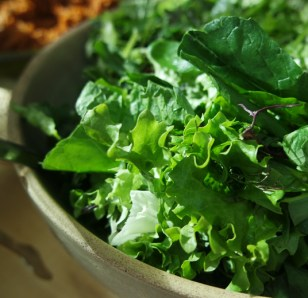 Green and Fresh Spring Salad