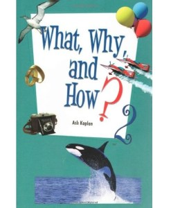 What, Why and How - 2 by by Asli Kaplan