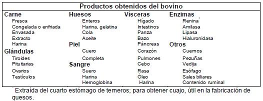 Productos obtenidos del bovino