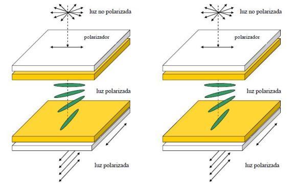 superficies de electrodos