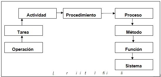 Conjunto de pasos
