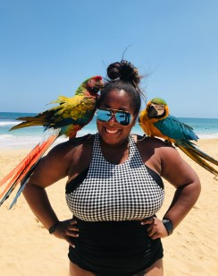 Photo Opp with the Parrots