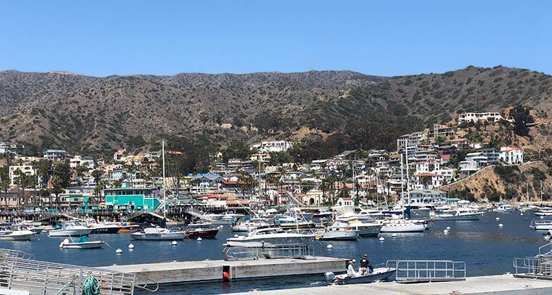 Catalina Island: A Beautiful Getaway