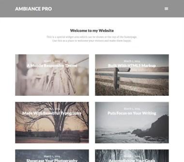 Genesis Ambiance Pro Theme by StudioPress