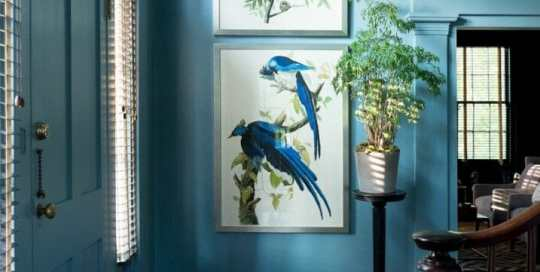 Paintings of large blue birds hang on a light blue wall. The dark brown railing of a staircase is in the foreground.