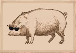 blind-hog
