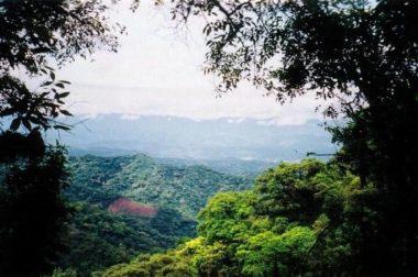 La Reserva Natural de Tariquía en peligro