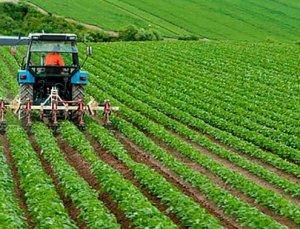 Tarım ve Hayvancılık Makineleri Sanal Fuarı Pazartesi Gerçekleştirilecek