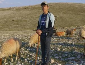 Son 20 Yılın En Kurak Dönemi! 'Hayvanlarımıza Ot Bulamıyoruz'