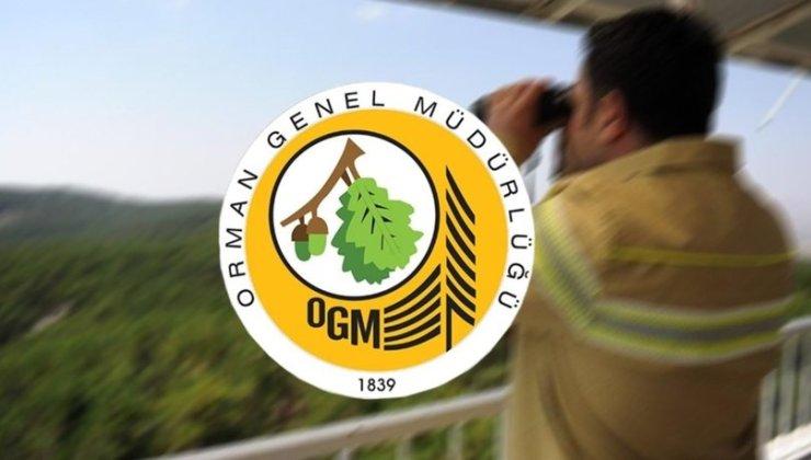 Orman Genel Müdürlüğü (OGM) Personel Alım Listesini Yayınladı: İşte İl İl O Liste ve OGM Başvuru Detayları…