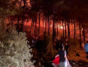 Muğla'nın Fethiye İlçesindeki Yangın Molotof Kokteyli Atılarak Çıkarıldı! Yangınlar Bilinçli Çıkarılıyor