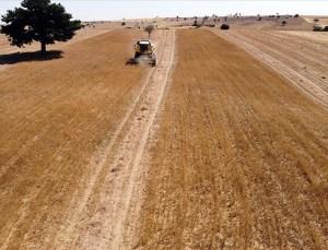 Tarımsal Girdi Fiyat Endeksi Tüm Zamanların En Yüksek Seviyesini Gördü